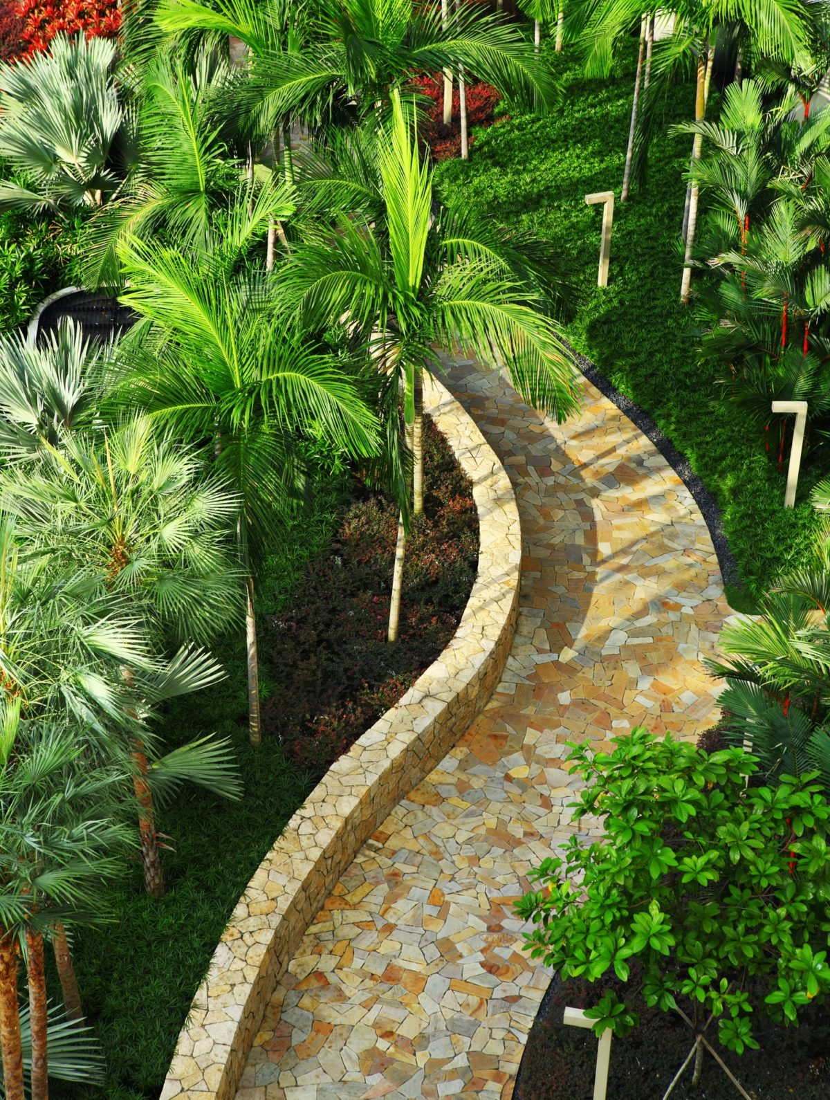 Stone path in green tree garden